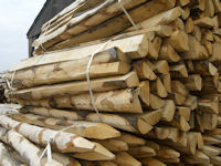 Mixed bundle of Sawn Chesnut Stakes_s
