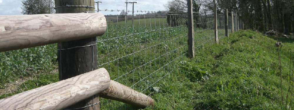 Dorset Fencing Supplies